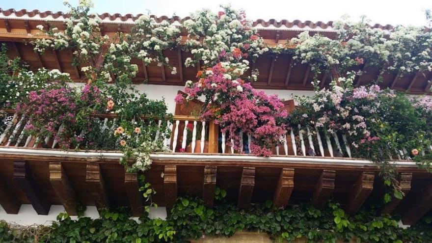 Janelas de Cartagena - Colômbia