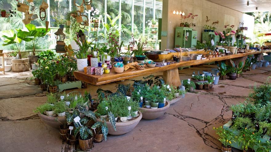 Loja Botânica - Inhotim