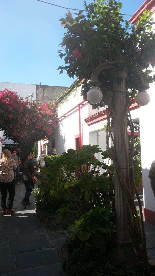 Vilazinha linda em San Telmo - Buenos Aires